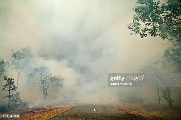 Litchfield National Park, Northern Territory, Australia.