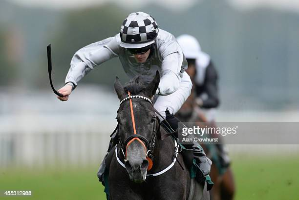 Billy Lee riding Agnes Stewart win The John Smith's Extra Smooth May Hill Stakes at Doncaster racecourse on September 12 2014 in Doncaster England
