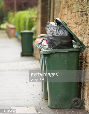 Bin Collection Day