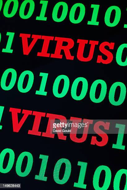 Binary code and virus warning on a computer screen
