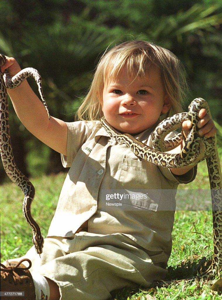 Bindi Irwin, 2, daughter of Steve Irwin, with with Burmese Pythons.