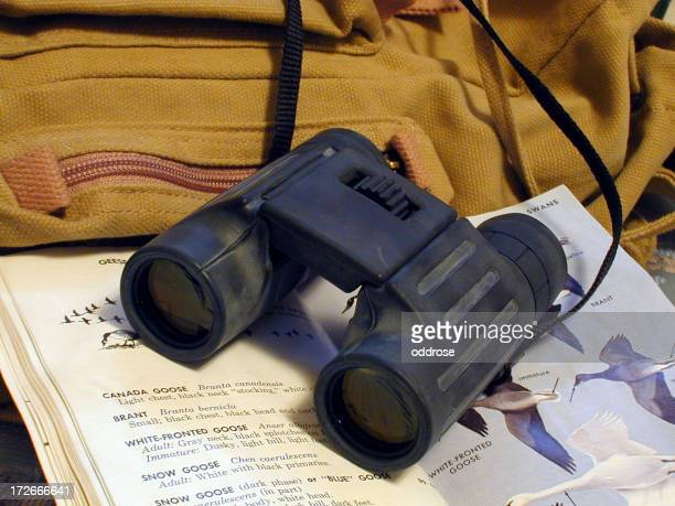 binoculars resting on birdbook and backpack