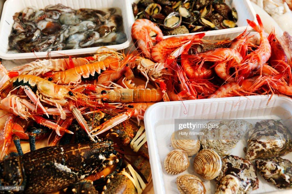 Bins of fresh seafood