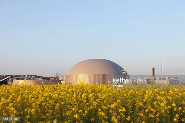 bio gas power plant und generator