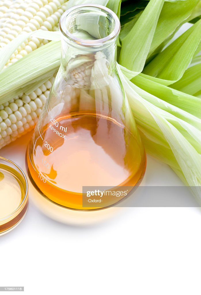 Biofuel or Corn Syrup