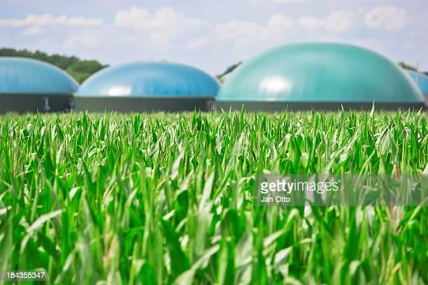 Biogas de energía