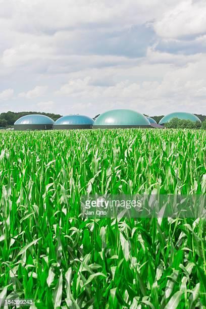 Biogas fahren Energie