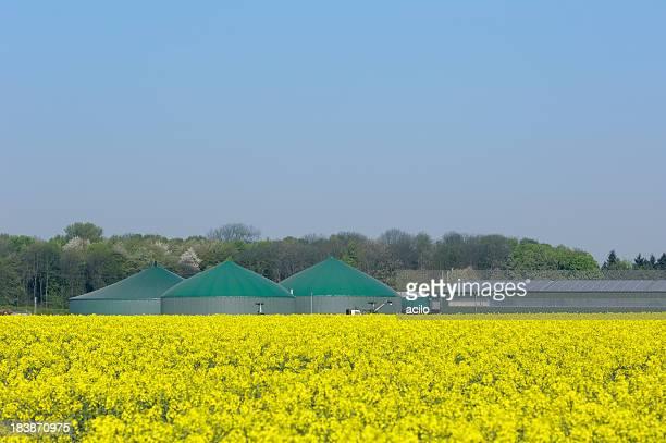 Biogas fahren Pflanzen und Solarzellen auf einer farm-Gebäude