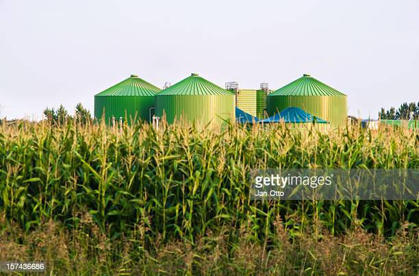 Biogas-industry