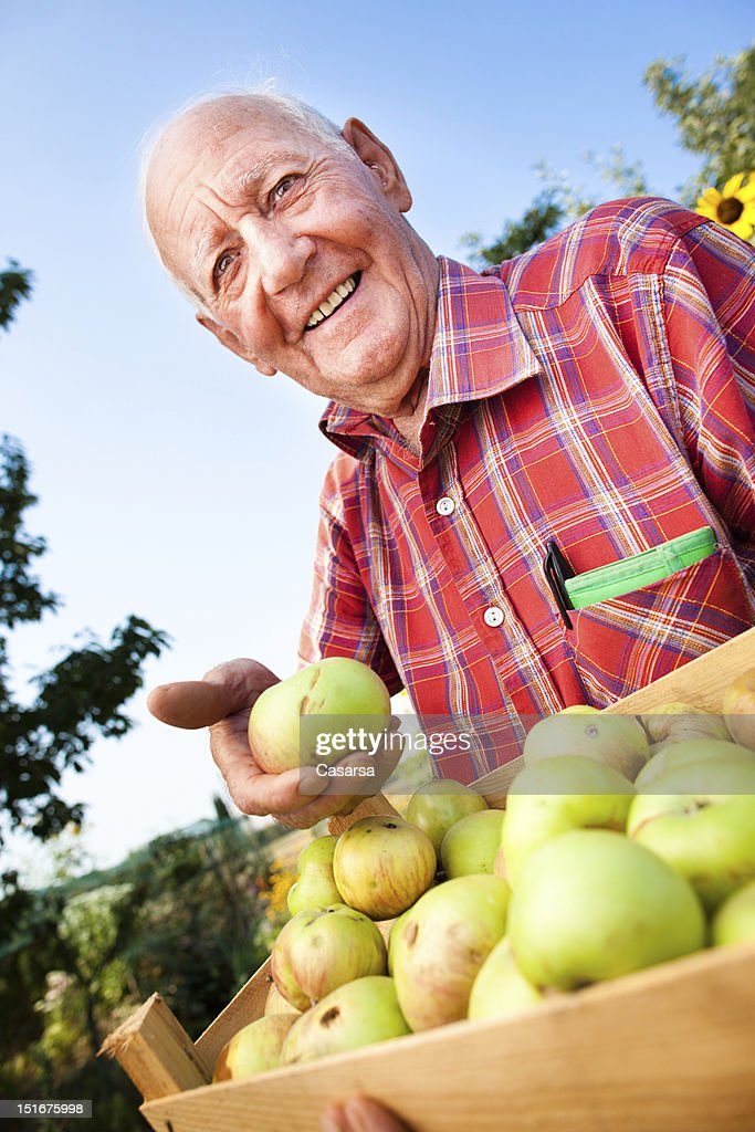 Biological agriculture : Stock Photo