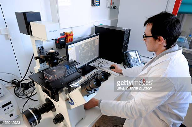 A biologist specialized in nanotechnologies studies brain cells with a microscope on October 29 2012 in Clinatec's/Edmond J Safra research center new...
