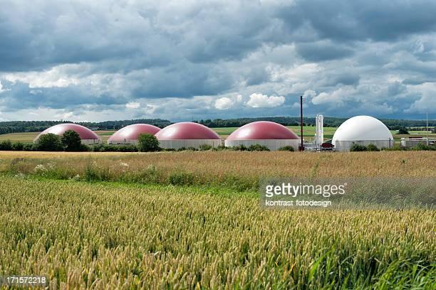 Pflanze unter Biomasse Energie ein Nähern Gewitter