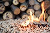 Fir biomass in flomes - renewable energy