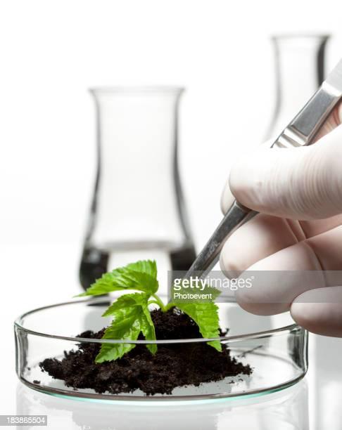 Biowissenschaften