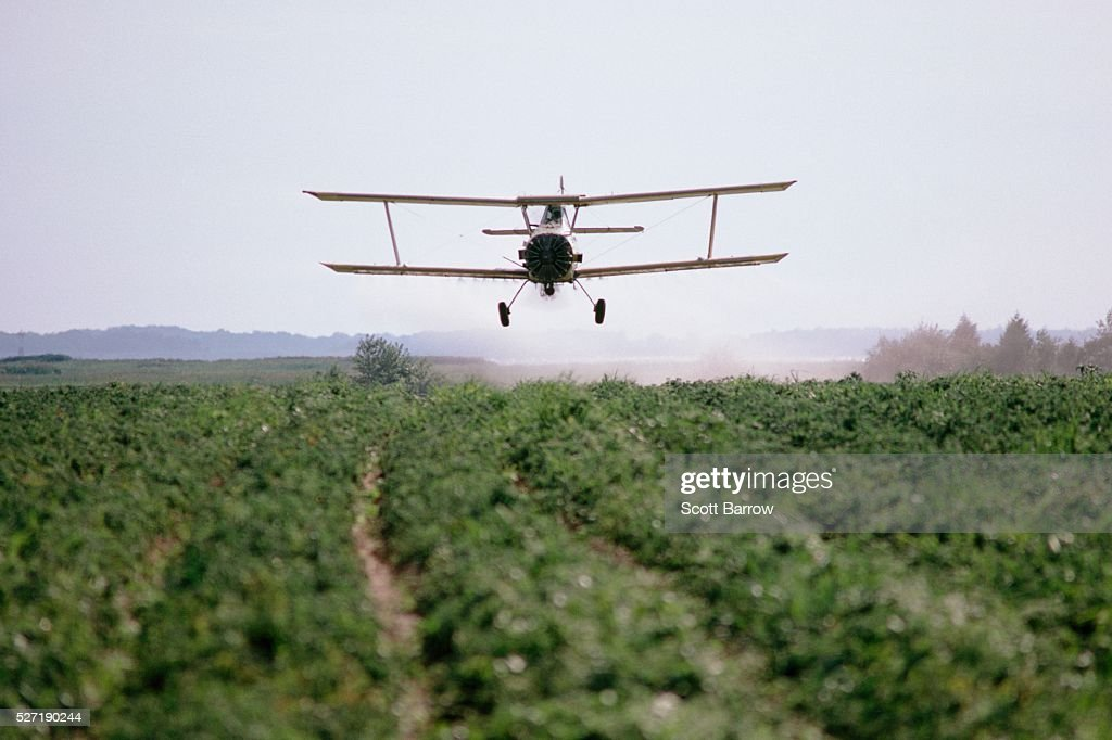 Biplane crop dusting a field : Foto de stock