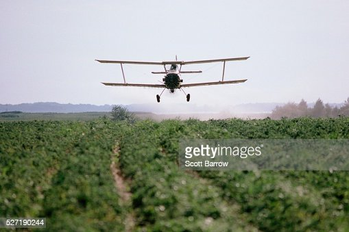 Biplane crop dusting a field : Photo
