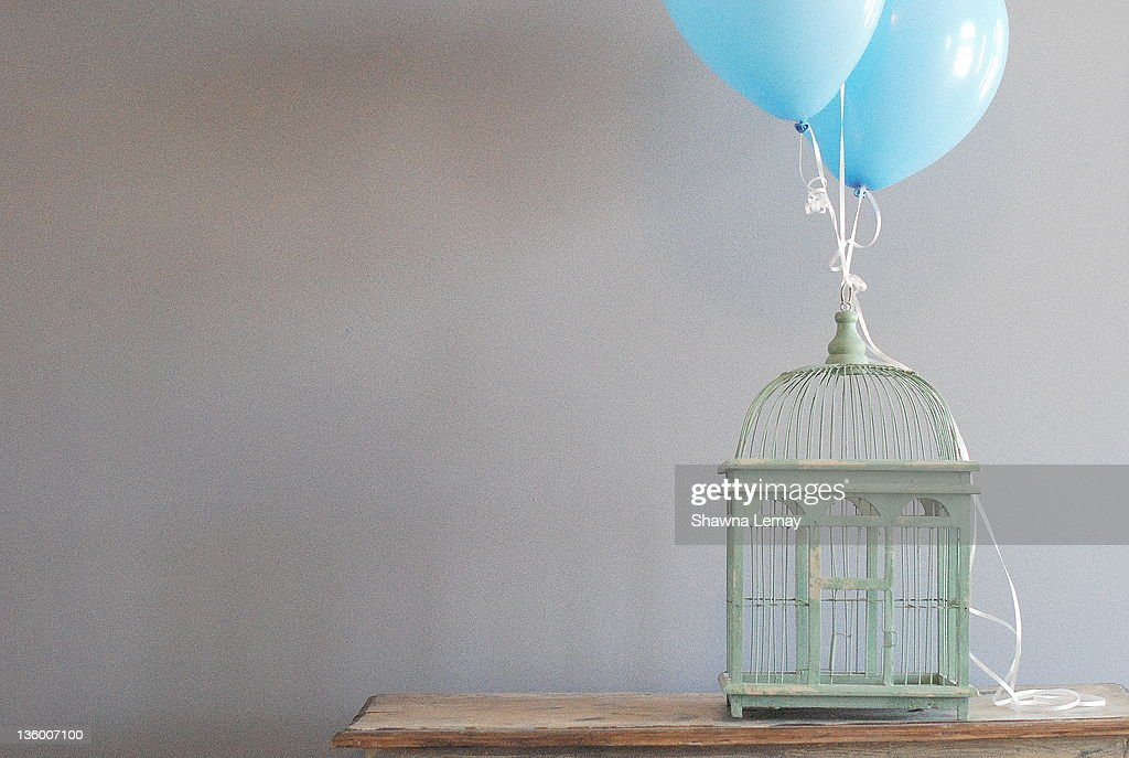 Bird cage and balloons : Stock Photo
