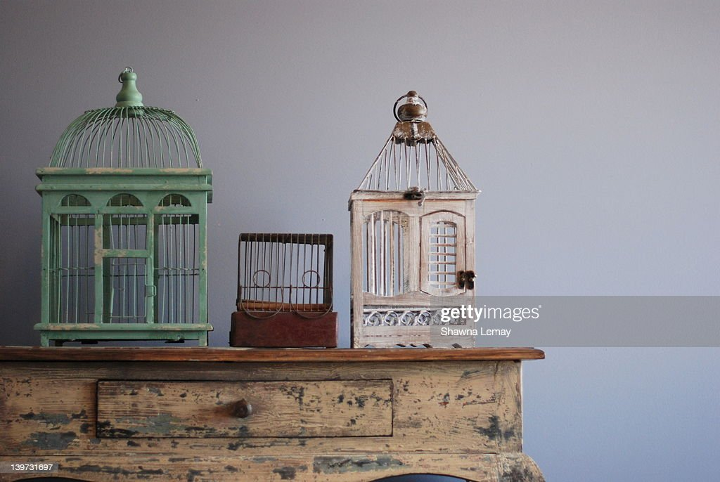 Bird cages : Stock Photo