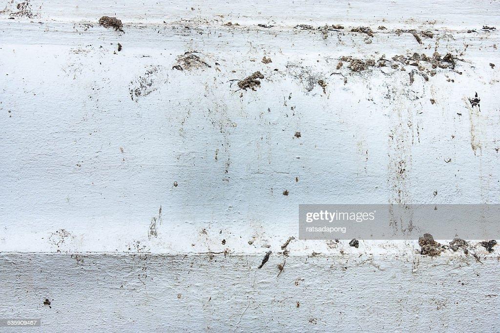 Pássaro fezes está sujo : Foto de stock