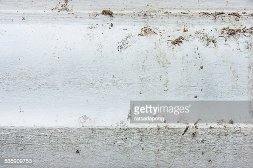 Bird feces is dirty : Stock Photo