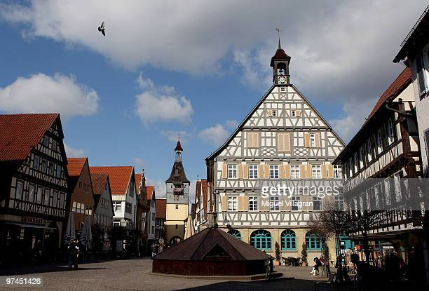 A bird flies above the pedestrian zone in the city center on March 5 2010 in Winnenden Germany Tim Kretschmer opened fire on teachers and pupils at...