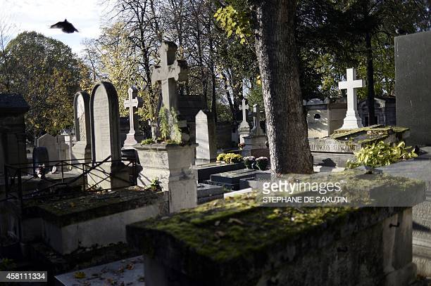A bird flies across tombs at the Pere Lachaise cemetery in Paris on October 30 prior to All Saints' Day to be celebrated on November 1 AFP PHOTO /...