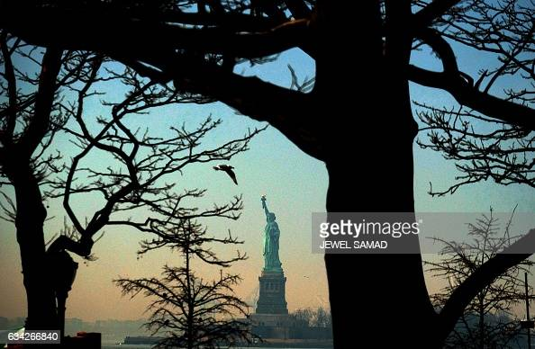 A bird flies as the Statue of Liberty is seen from Battery Park in New York on February 8 2017 / AFP / Jewel SAMAD
