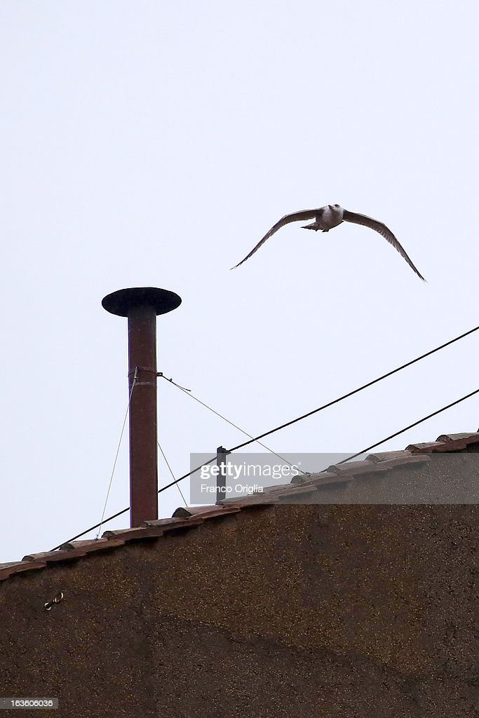 A bird flies away after sitting on the chimney on the roof of the Sistine Chapel during the evening of the second ballot of the Cardinals' secret conclave on March 13, 2013 in Vatican City, Vatican. Pope Benedict XVI's successor is being chosen by the College of Cardinals in Conclave in the Sistine Chapel. The 115 cardinal-electors, meeting in strict secrecy, will need to reach a two-thirds-plus-one vote majority to elect the 266th Pontiff.