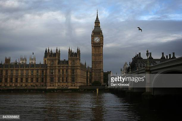 A bird flies away from The Houses of Parliament and Big Ben on June 22 2016 in London United Kingdom The UK goes to the polls on tomorrow June 23 to...