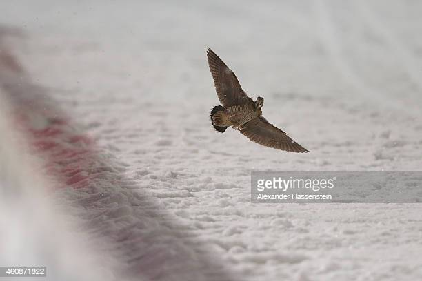 A bird flight at the finish arena on day 2 of the Four Hills Tournament Ski Jumping event at SchattenbergSchanze Erdinger Arena on December 28 2014...
