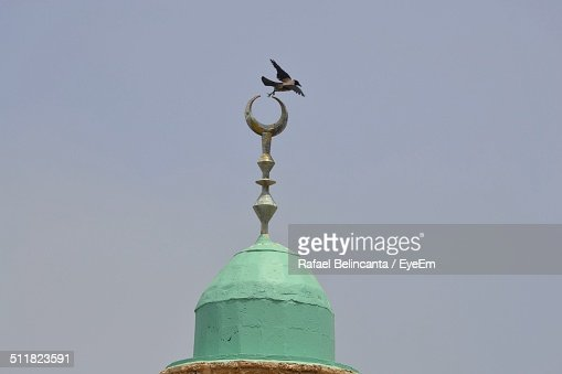 Bird flying from the top of a mosque
