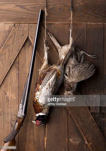 Bird Hunting Still Life