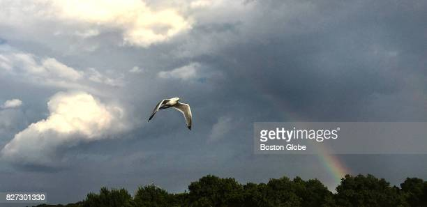 A bird joins an earlyevening rainbow over the South Shore Plaza in Braintree MA on Jul 18 2017
