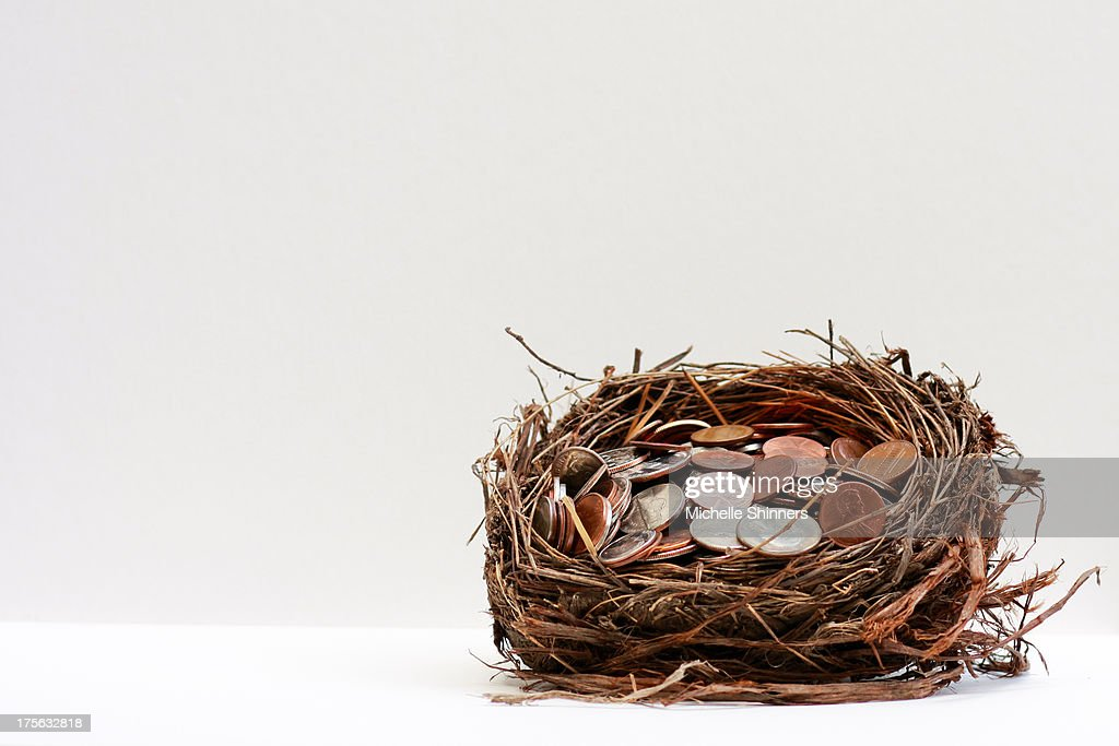 A bird nest filled with coins