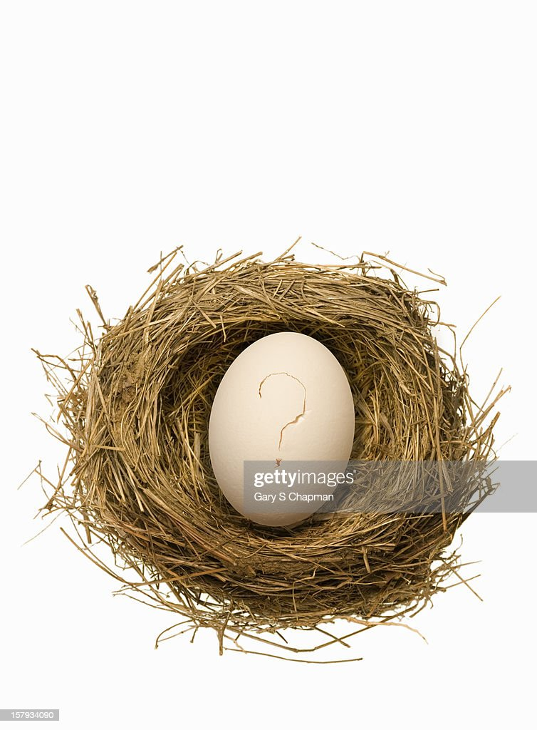 Bird nest with egg that has a question mark crack : Stock Photo