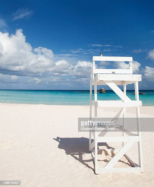 Bird on a lifeguard chair, Horseshoe Bay Beach