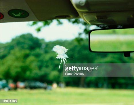Bird poo on car windscreen : Stock Photo