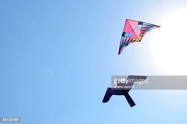 Bird shape Kites flying in clear blue sky, India