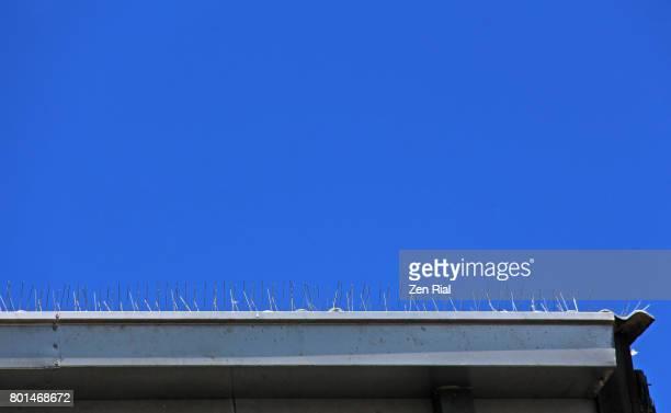 Bird Spikes on roof gutter against blue sky