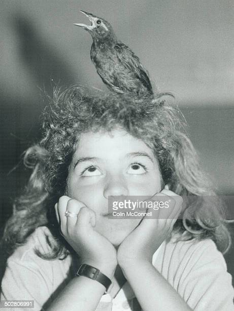 Bird talk Big sister Ariane gets a grackle a species of blackbird to sit on her head He has a shiny head and large wings and tail according to Lauren...