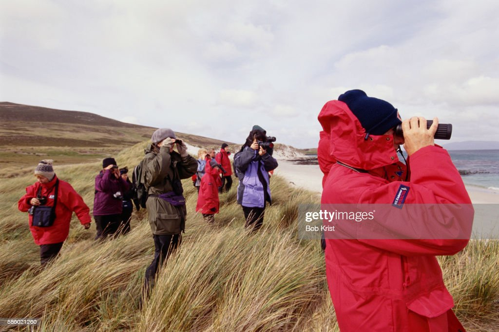 Bird Watching on Carcass Island