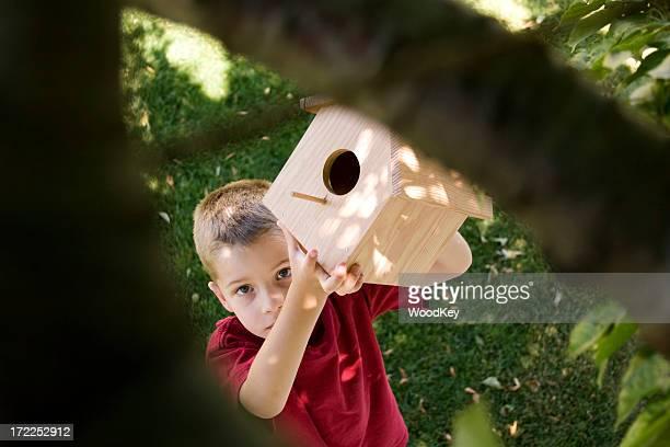 Birdhouse Builder