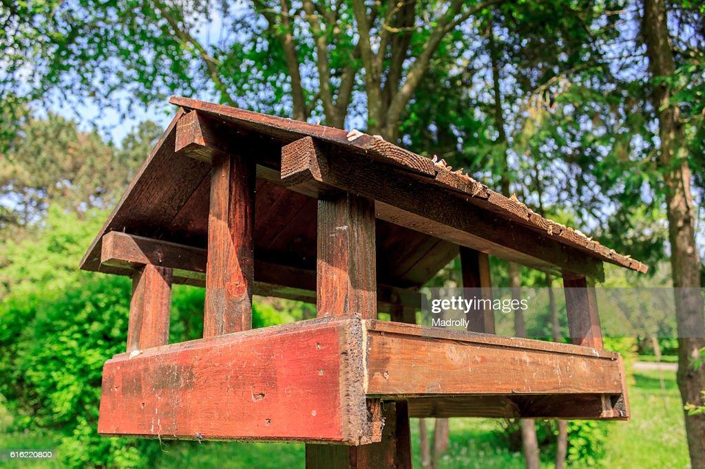 Casetta per gli uccelli in un parco : Foto stock