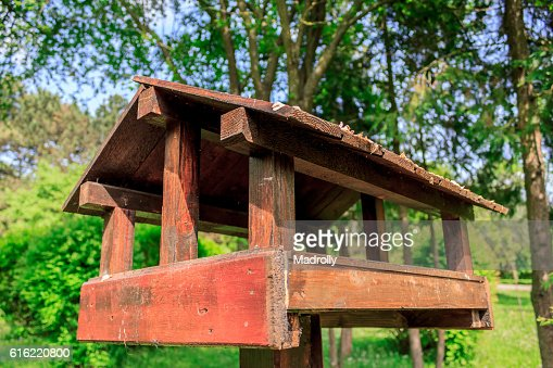 Birdhouse in a park : Stock Photo