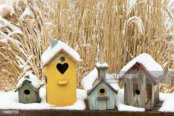 Birdhouses in Snow, Rustic, Weathered, and Colorful