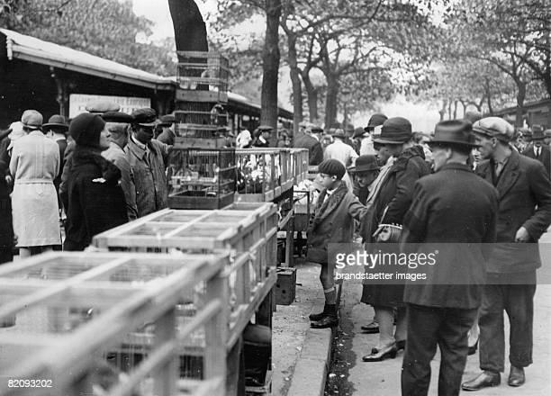 Birdmarket in Paris Place de la Cit Photograph France Around 1930 [Auf dem Vogelmarkt in Paris Place de la Cit Photographie Frankreich Um 1930]