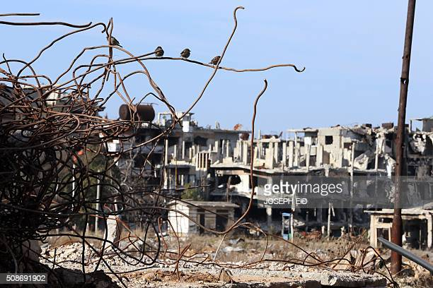Birds are seen sitting on iron rods from the rubble of destroyed buildings amid heavily damaged buildings in the war ravaged city of Homs on February...