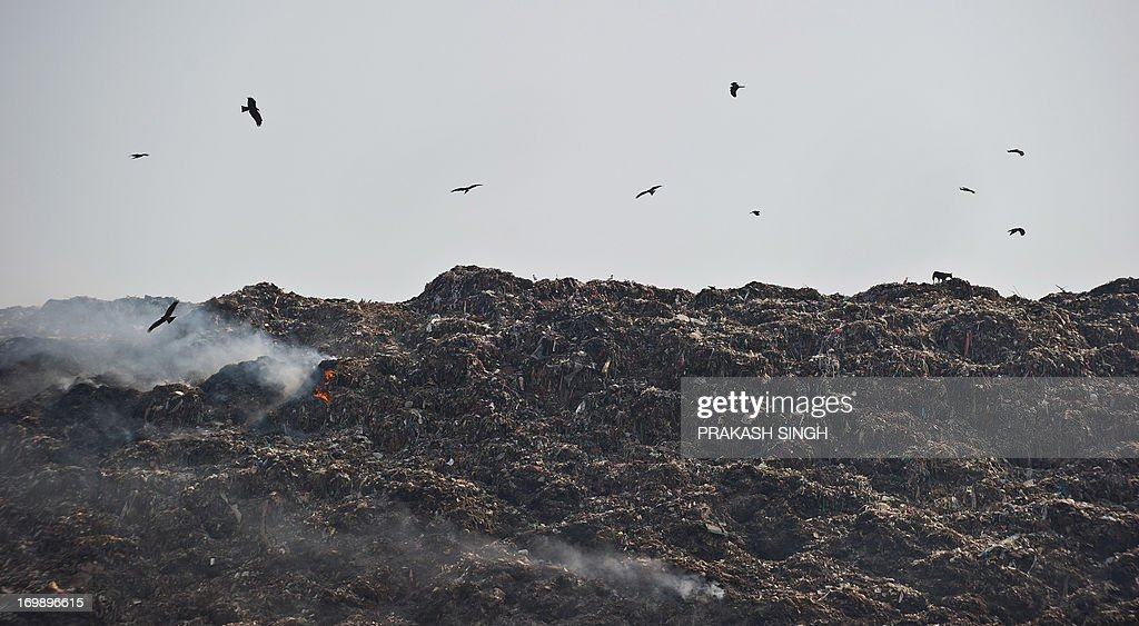 Birds circle as trash burns on one of the capital's garbage landfills at Gazipur in New Delhi on June 4, 2013, on the eve of World Environment Day. As per newspaper reports, the Indian capital produces 9,000 tons of garbage daily. India's cities are becoming more polluted and unhealthy, according to a new survey published Monday showing growing concern about the impact of high economic growth on the environment. AFP PHOTO/ Prakash SINGH