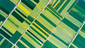 aerial view of  farmland in spring