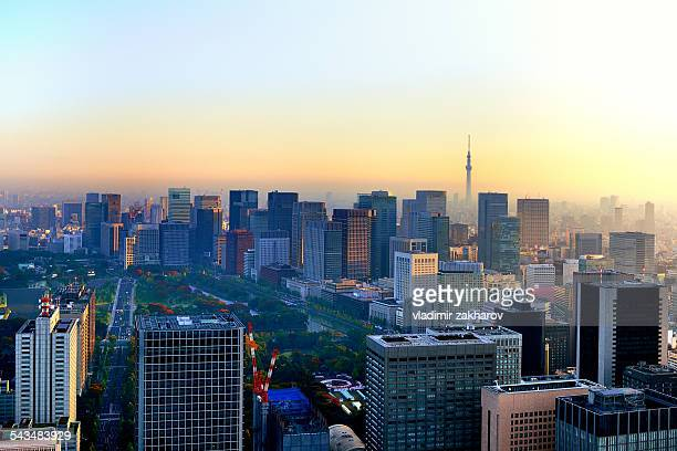 Bird's eye view of Tokyo's Downtown at sunrise